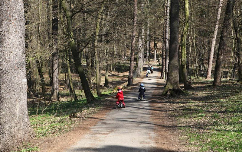 52 - Krčský forest - beautiful walk not only with children, or with your dog (9 km)