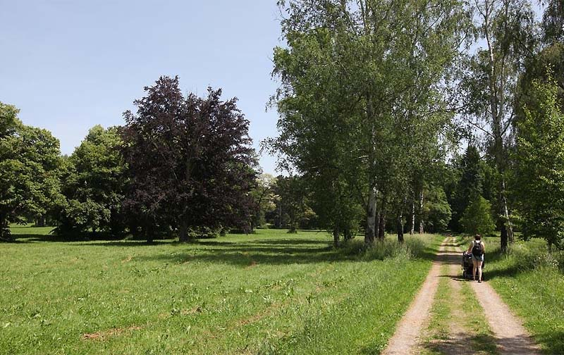 74 - Park and a castle of Konopiště - stroll around the pond and through the castle park (41 km)